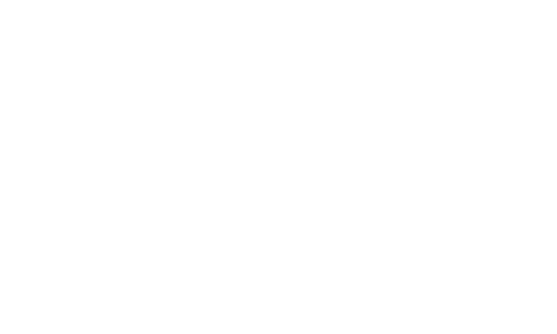 The Bespoke Dudes